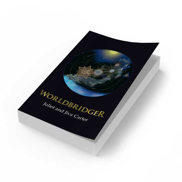 Worldbridger Book English Edition